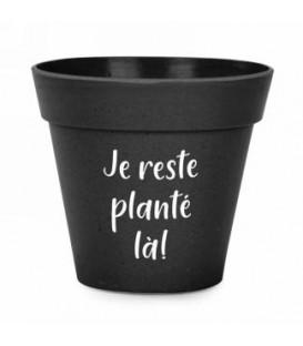 7 x 6 '' black bamboo pot