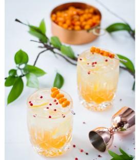 Tonic Québécois - Monsieur Cocktail