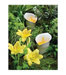 Ustensil pot LILY