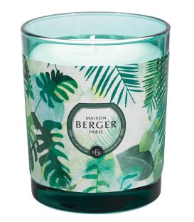 Bougie Berger IMMERSION Eucalyptus