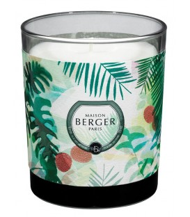 BOUGIE BERGER IMMERSION LITCHI