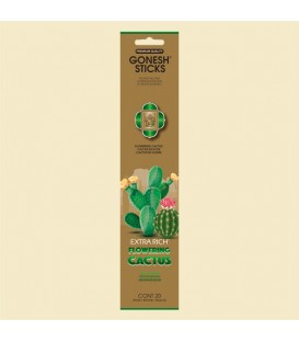 Encens Cactus paquet de 20
