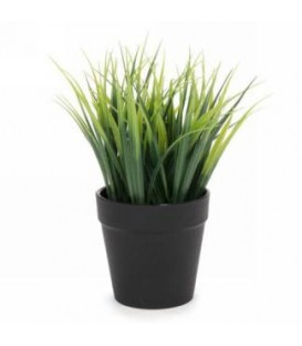 Deco grass plant in black pot