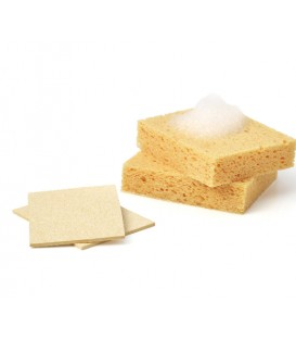 Compostable Sponges